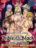Bible Black New Testament 6: Reproduction